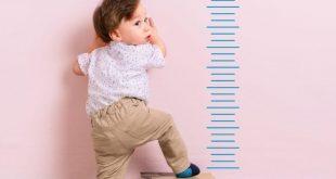 5 غذای مفید برای رشد کودکان