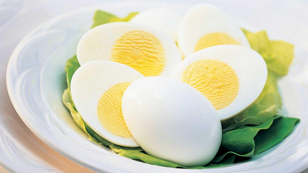 تخم مرغ سرشار از ویتامین